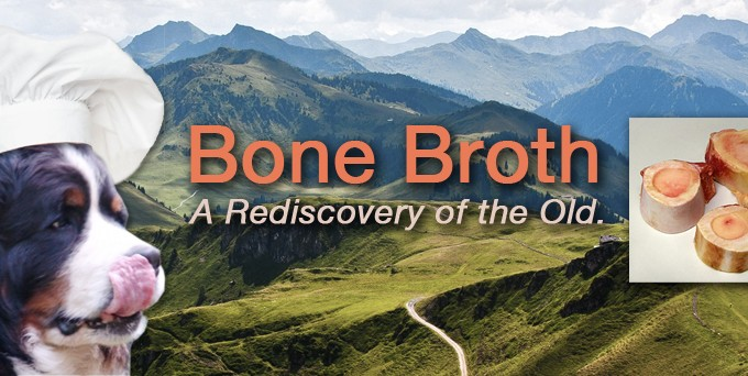 Bone Broth, Phoenix Rising Veterinary Care