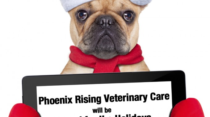 Phoenix Rising Veterinary Care, Regenerative Medicine, Holiday Hours